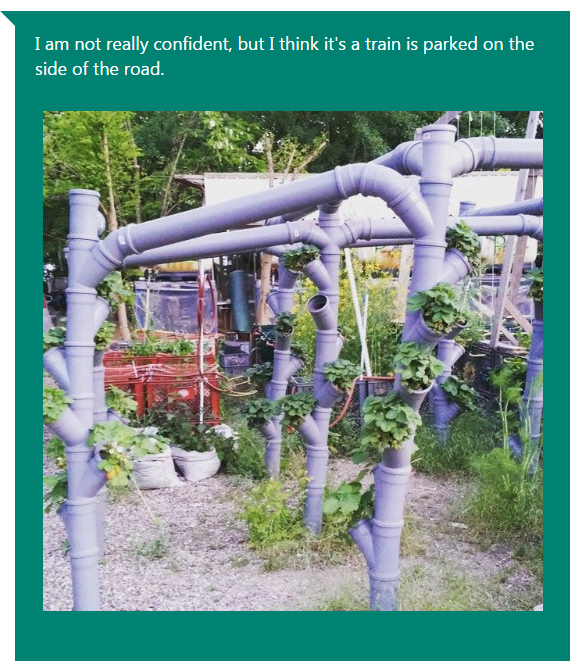 Captionbot Urban Gardening